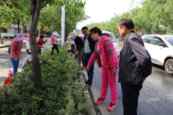 漯河:打造城市靓丽绿化景观 添彩助力食博会 中国财经新闻网 www.prcfe.com
