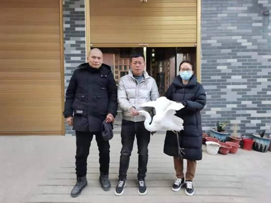 """有""""警""""必出!2020年漯河救护中心共救护87只野生动物"""